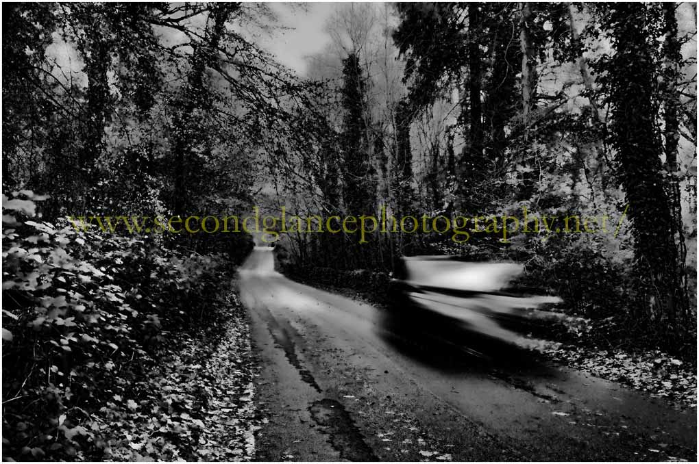 Ghostly woods road