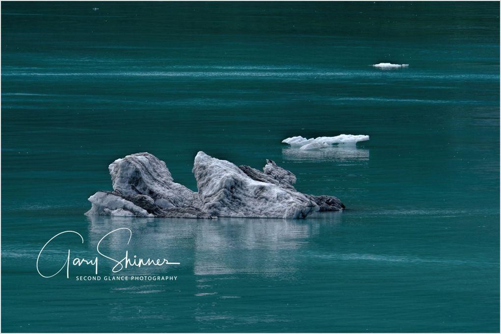 Glacier Bay - Debri 2