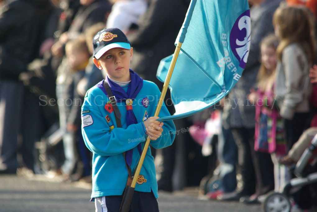 The Young Flag bearer
