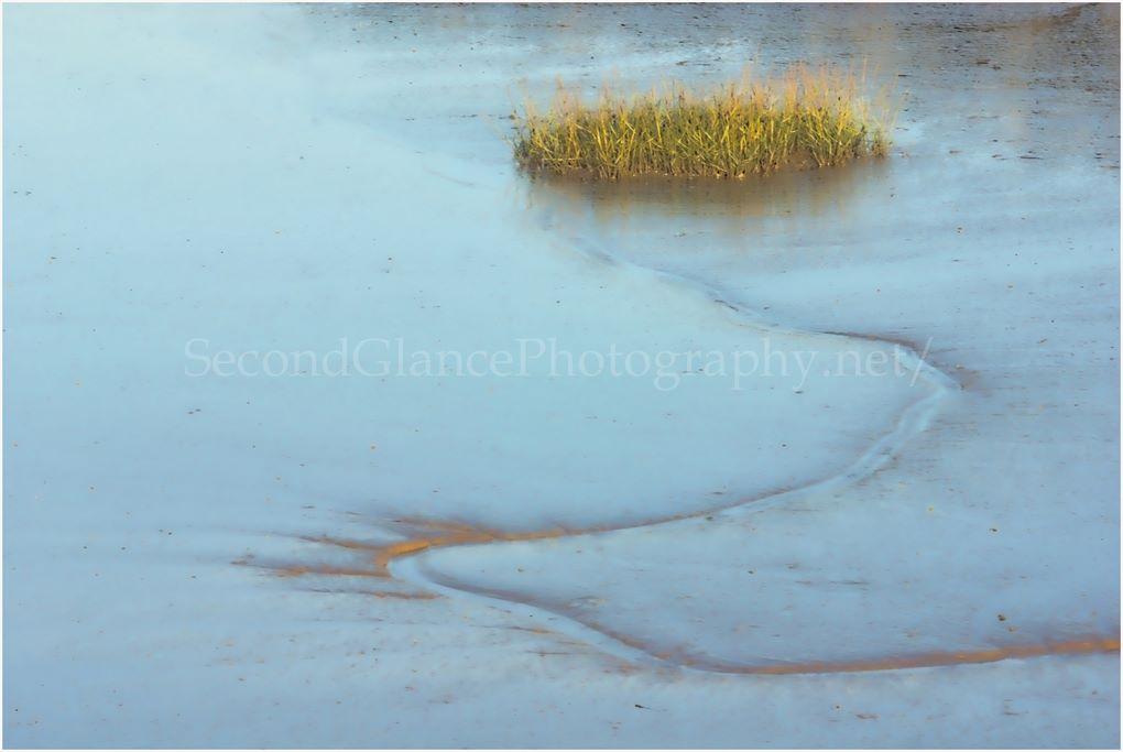 Mud & reeds