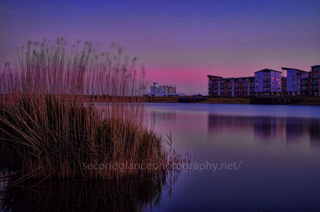 Purple Clarity