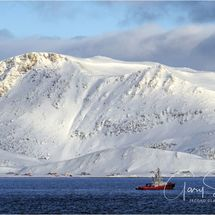 Red Tug waiting - Norway