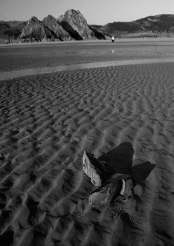 Shoreline, Someone & Shoes