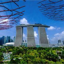 Singapore Sunshine at Bay Gardens