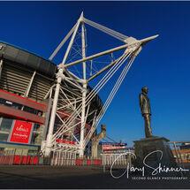 Stadium Sentinel