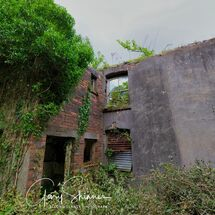 The Backyard dereliction