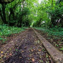 The old Tramway path
