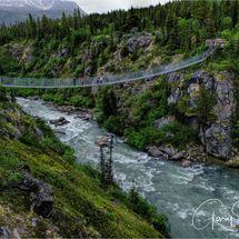 Tutshi River Suspension Bridge