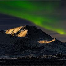 We saw them - Tromso