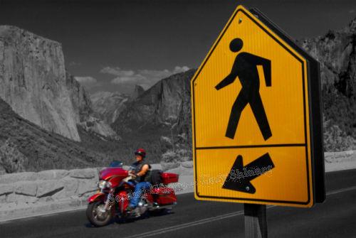 Yosemite - Tourist Options