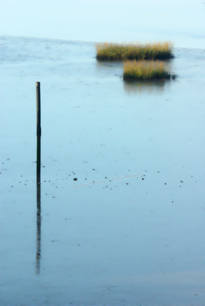 pole & reeds (abstraction)