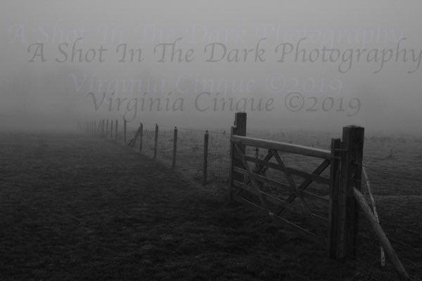 Foggy Gate