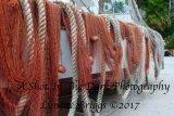 Praiano Nets 2