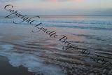 Lacy Sea