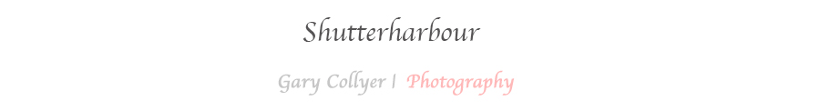 Shutterharbour