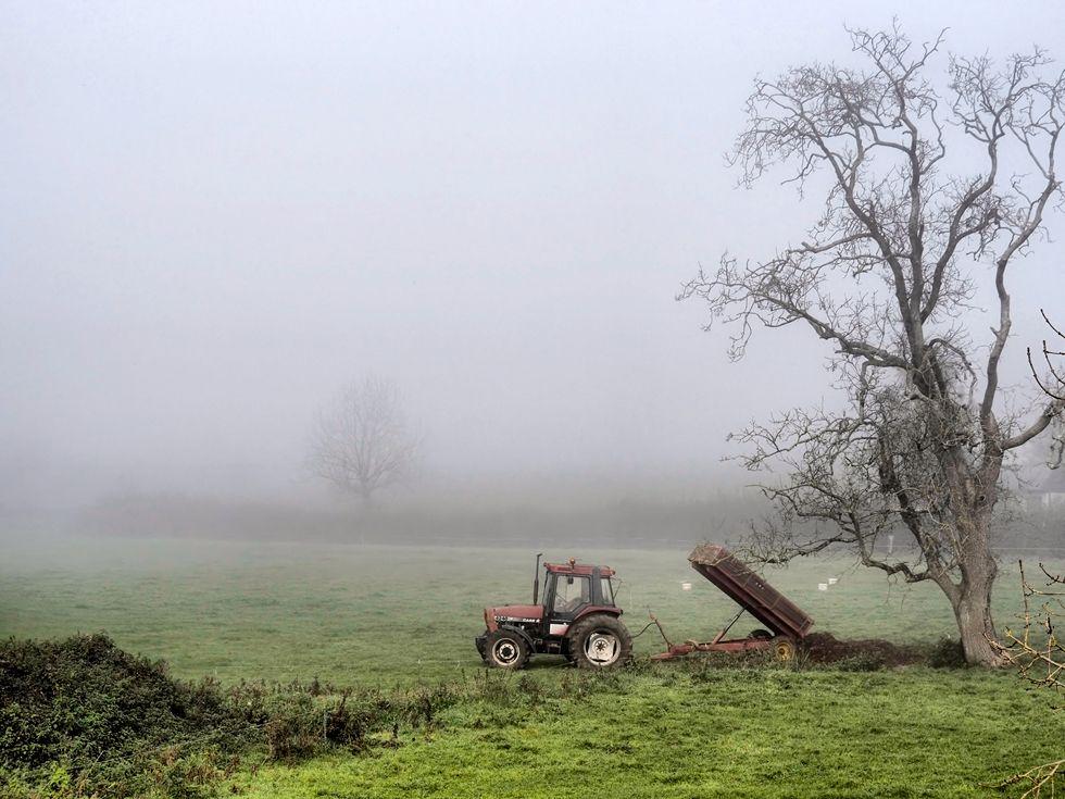 2nd-Misty Morning-Charlotte Sullivan