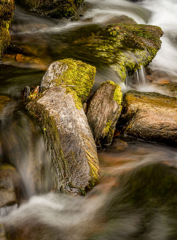 Commended-Watersmeet-Michael Ginsberg