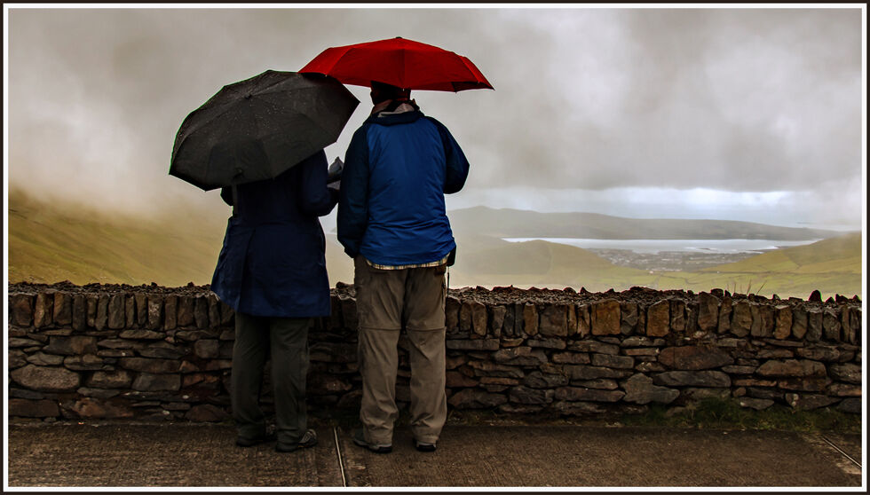 Highly Commended-A view in the rain-Sue Cox