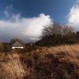 Highly Commended-Wild Habitat-Lisa Millership-Evans
