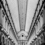 1st-Avenue de la Reine-Julian Shaw