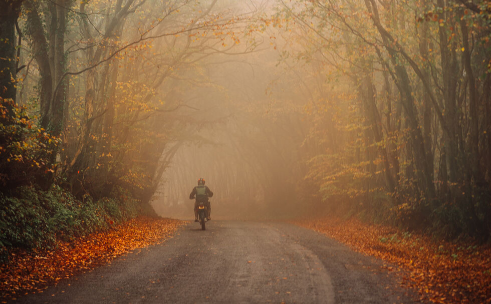Foggy Biker by Sarah Hall (Third place - Post March 2020 section)