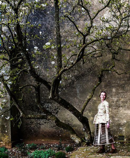 3rd-Beneath the Magnolia Tree-Sarah Hall