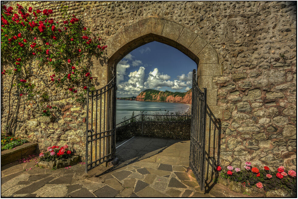 Sidmouth Summer