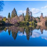 Winter Reflections Sheffield Park Gardens