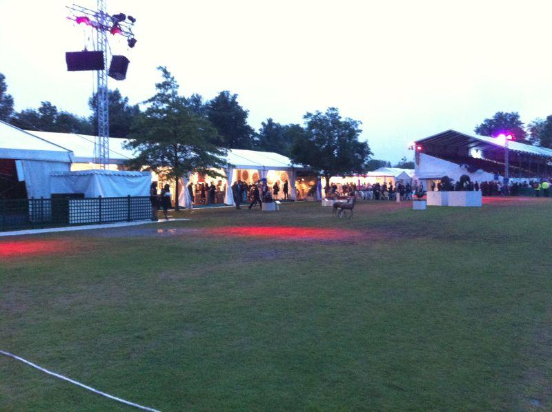 Henley Arts Festival 2012