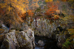 Autumn in Glen Lyon