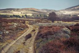Old Track, Glen Esk