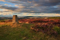 Summit, Carrot Hill