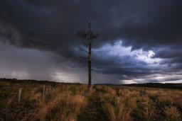 Thunder Storm, Carrot Hill
