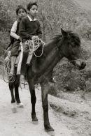boys on a horse