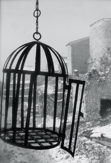 past shadows: human cage