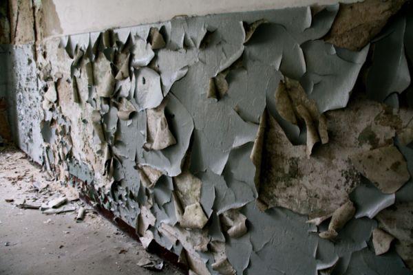 weary wall