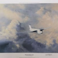 Afternoon Flight Victor