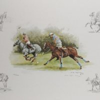 Polo by C Roche