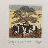 Shady Cows