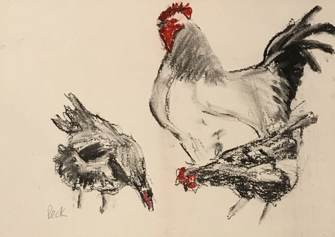 Chickens; charcoal on paper