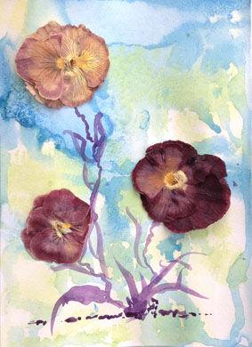 pressed flowers1