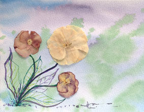 pressed flowers3