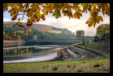 Autumn at Derwent