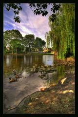 River Wye in Bakewell