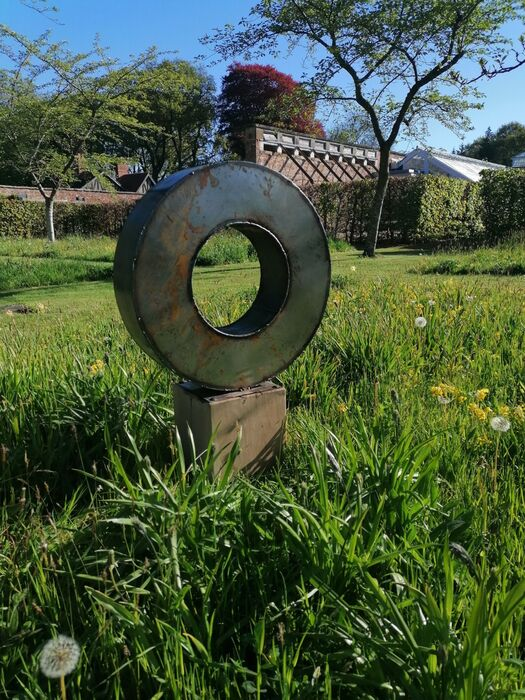 Thick steel ring small