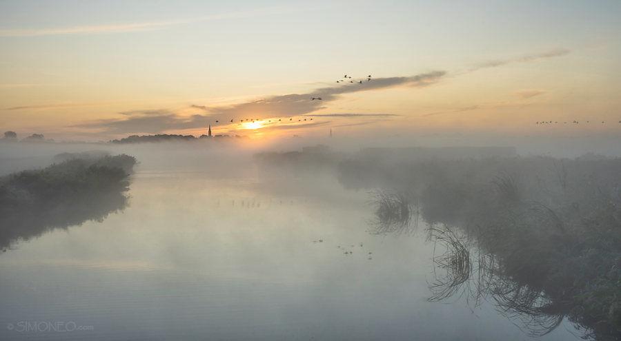 Waterlandse morgen