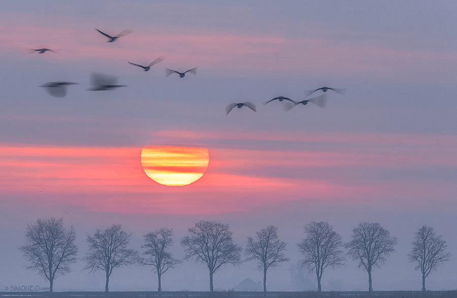 Sunrise in full colour