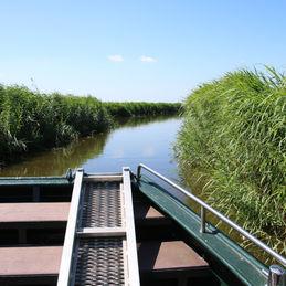 Workshop fotograferen in Waterland met Staatsbosbeheer