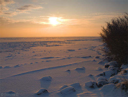 Winter at the Gouwzee