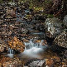 coachan a ghuib stream in Glenmore Forest